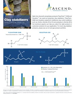 Specialty chemicals application: clay stabilizers