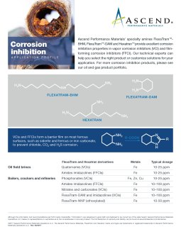 Specialty chemicals application: corrosion inhibition